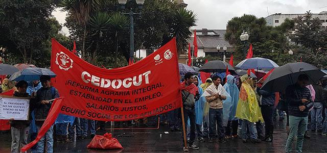 Plantón exige al gobierno derogatoria de Ley de Justicia Laboral